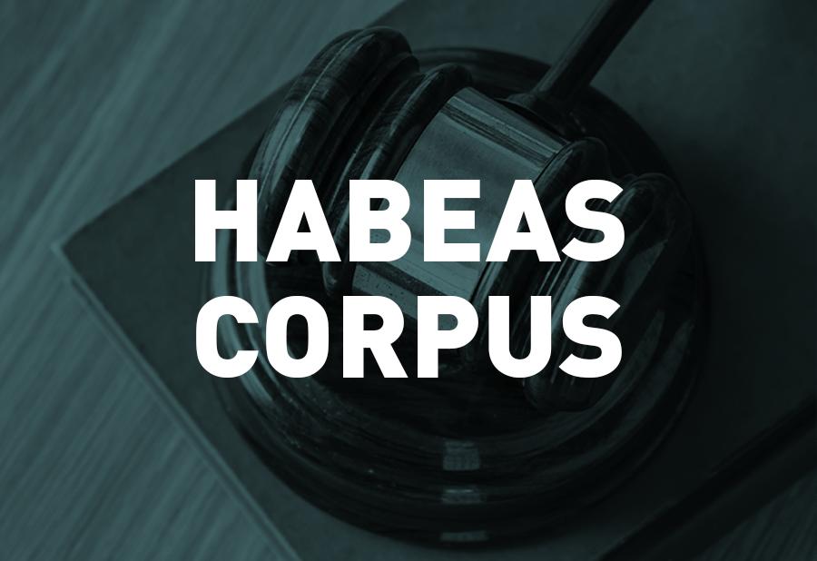 1º Câmara Criminal nega por unanimidade Habeas Corpus a Evellyn Brisola Perusso