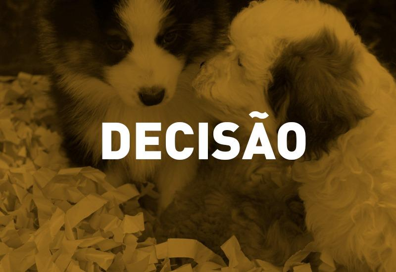 COVID-19: Pet shops de Maringá pleitearam na Justiça a volta de suas atividades presenciais